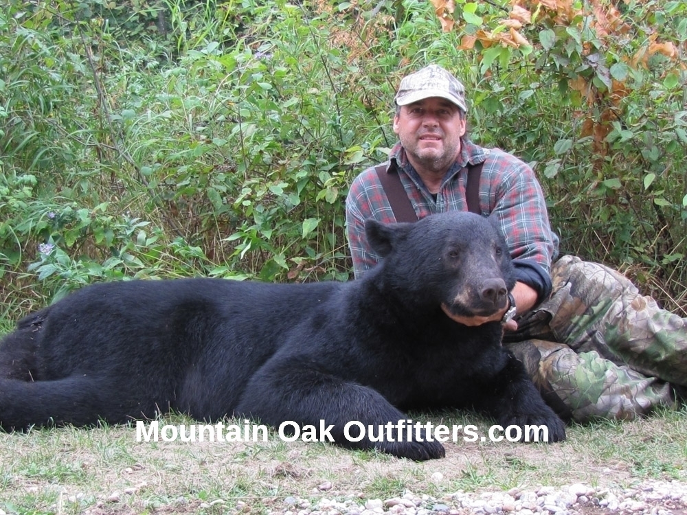 Canada Bear Hunts